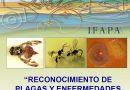 Curso de Reconocimiento de Plagas y Enfermedades de los Cítricos