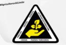 El sector hortícola almeriense se concentrará en El Ejido para solicitar medidas ante la crisis estructural