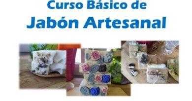 Curso Básico de Jabón Artesanal. Modalidad online.