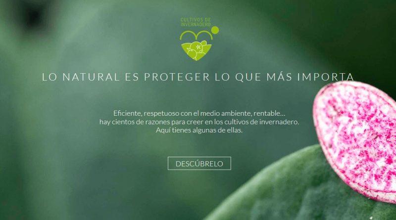 Campaña de promoción e información 'Cultivos de Invernadero'
