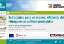 Estrategias para un manejo eficiente del nitrógeno en cultivos protegidos